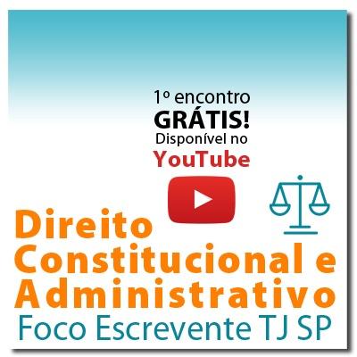 Direitos Constitucional e Administrativo Artigo por Artigo para Escrevente TJ SP - Módulo 1