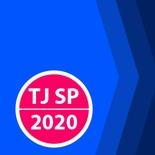 Concurso Escrevente TJ SP 2020 | Curso Online Direito Processual Civil