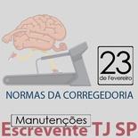 TJ SP Escrevente - Manutenção VUNESP Normas da Corregedoria